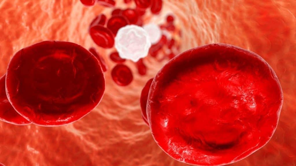 Schlechte Blutwerte optimieren