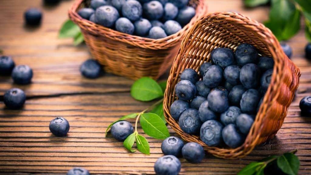 nährstoffreiche Lebensmittel Blaubeeren