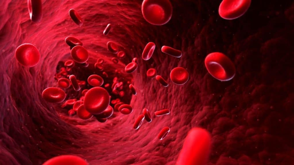 Kupfer Mineralstoff - Blutkörperchen
