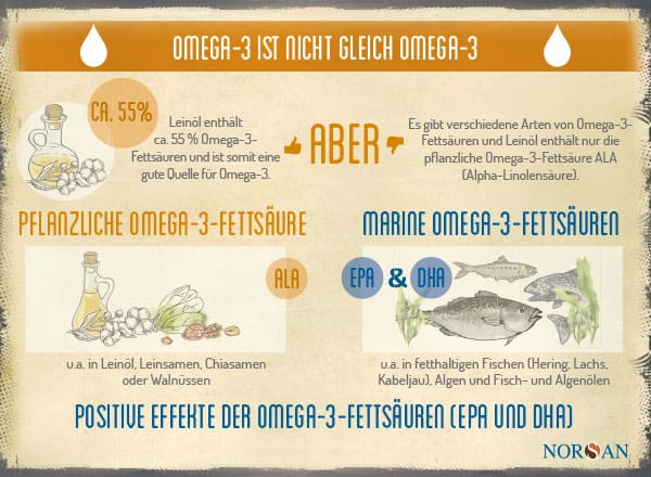 NORSAN Test Leinöl Fischöl